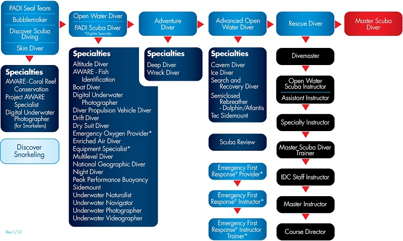 PADI Education Chart