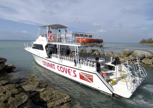 South Florida Glass Bottom Boat Tours