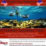 Snorkel with Sea Experience this Veterans Day