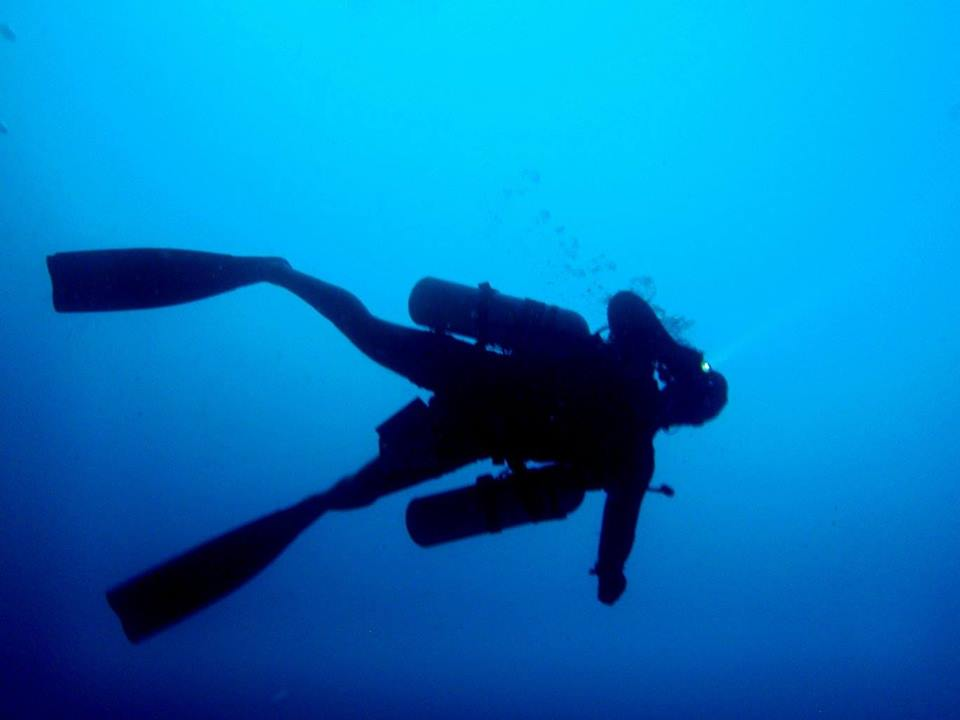 Image Result For Va Approved Dive Training